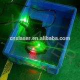Luz de la Navidad al aire libre del proyector del laser del jardín de la luz laser de la Navidad de la demostración al aire libre impermeable de la luz laser