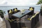 6-10person (YTA020-1&YTD020-4)에 의하여 의자 & 테이블을 식사하는 최상 판매 길쌈된 알루미늄 옥외 정원 가구