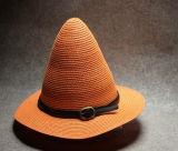 2017 El sombrero de paja multicolor más nuevo del chapoteo del diseño de la manera