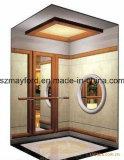 유리제 차 벽 홈 엘리베이터