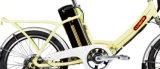 """20 """" Floded Lithium-Batterie-elektrisches Fahrrad (LN20F05)"""