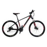 Bicyclette étonnante de montagne avec des accessoires de Shimano