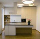 Furnierholz-glatter Küche-Schrank (zhuv)