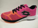Die Breathable Farben-Luft der Marken-Schuh-5 schnüren sich oben Knit-Fußbekleidung