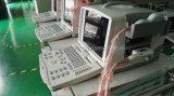 Sistema de ultrasonido portátil digital con dos conectores de plataforma PC CE aprobado Ysd1200