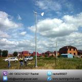 De permanente Turbine die van de Wind van de Magneet Kleine (1000W zonnen)