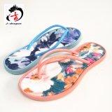 Fracaso de tirón colorido para los zapatos de la mujer
