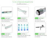 水Dermabrasion/水水のDermabrasionの皮機械