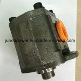Pilotpumpen-Zahnradpumpe der Hydraulikpumpe-A10VD43 (KEY/10T/12T/DOUBLE)