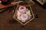 Contenitore reale naturale di fiore di modo 100% Rosa per il regalo di compleanno