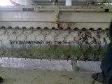 PVCによって塗られる電流を通された重い六角形の金網か網