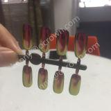 Polvere fotocromica di arte del chiodo del pigmento della perla del Chameleon del pigmento