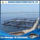 Fische sperren sich hin- und herbewegendes Rohr für die Aquakultur-Fischzucht ein