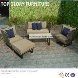 Meubles tissés et en aluminium de courroie, sofa extérieur de jardin (TG-6004)
