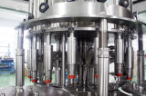 Completare la a - l'impianto di imbottigliamento dell'acqua del Aqua di Z