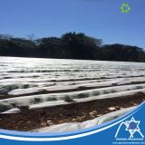 PP Spunbond Nonwoven Fabric with Anti-UV Protector for Cover Agriculture