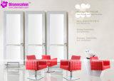 Silla popular del salón de la silla de peluquero del espejo del salón de la alta calidad (P2025F)