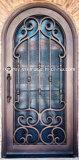Neues Entwurfs-Quadrat-oberste bearbeitetes Eisen-einzelner Eintrag-Türen