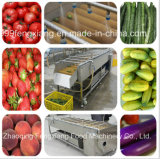 Machine van de Was van de Groente van het Fruit van het Water van het Type van borstel de Schoonmakende Spoelende Spoelende