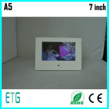 Весь вид модуля видео- карточки LCD