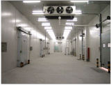 レストランの商業低温貯蔵の冷蔵室、冷却装置、フリーザー部屋の歩行