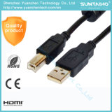 Qualitäts-Mann zum weiblichen USB-Extensions-Kabel