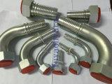 45/90 degrés SAE DIN Jic Orfs BSPP Raccords de flexibles femelles / mâles