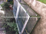PVCによって塗られる電流を通された六角形ワイヤー鶏の網の網
