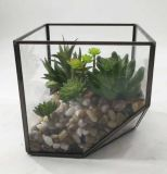 Succulent mis en pot moderne en métal miniature artificiel de Terrarium