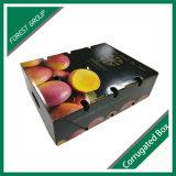 Caixas onduladas da fruta feita sob encomenda profissional com qualidade forte