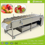 Nettoyage de lavage en brosse de légume fruit de l'eau vidant rinçant la machine