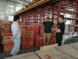 Láminas profesionales del disco del fabricante de China