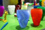 ABS van de Druk van het Ontwerp van de douane 3D UV Plastic Model PLA