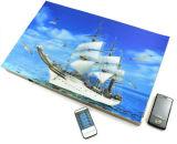 Jammer do sinal do telefone de pilha do poder superior 2g 3G com estilo de pintura escondido