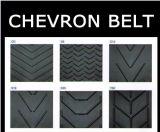 Cinturón de goma de Chevron con dibujos baratos