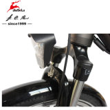 350Wブラシレスモーター700Cアルミ合金フレームの電気バイク(JSL033G-1)