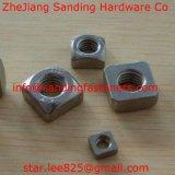Noix carrée de noix Hex d'acier inoxydable