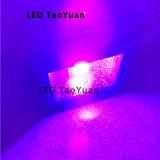 Encre UV 50W de la lampe 365nm