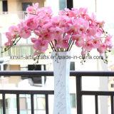 8 fiori artificiali di tocco delle teste dell'orchidea di seta reale di Phalaenopsis