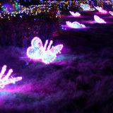 休日ライトショーのための装飾的なLEDの蝶休日ライト