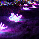 Decorativa Light Flower LED para Street