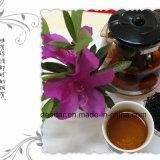 Ausgezeichneter Rohstoff-Dunkelheit-Tee