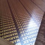 China-Pappel-Schwarz-Film stellte Furnierholz für Aufbau von der Fabrik gegenüber