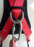 Tailles et types réutilisables de points d'attache d'arrestation d'automne de harnais de sûreté divers