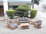 Vimine del patio del giardino/sofà del rattan impostato - mobilia esterna (LN-3029)