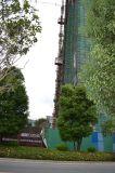 Velocidad clasificada y alzamiento de la grúa del edificio de la construcción CH-226