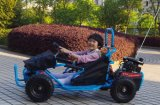 Il Buggy dei capretti va Kart 80cc con Ce