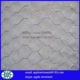 China-Fabrik-Qualitäts-sechseckige Draht-Filetarbeit