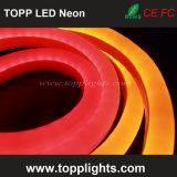 tubi al neon del rimontaggio della bobina 230V 120V 24V LED di 50m