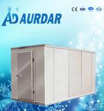 Congelador de la cámara fría del precio bajo de China